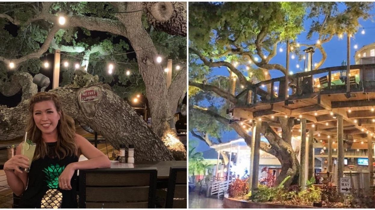 This Bar In Florida Serves Drinks In An Actual Treehouse