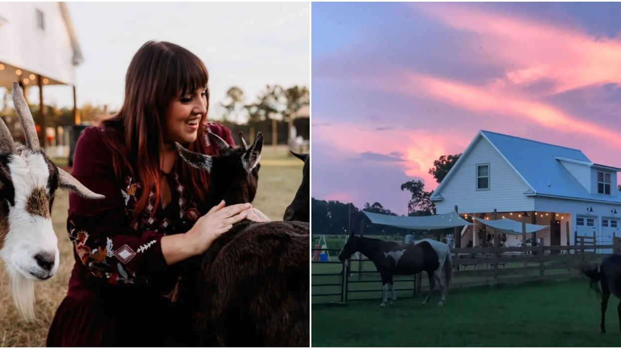 Cute Florida Airbnb Is A Tiny Farmhouse And Has Goats You Can Pet