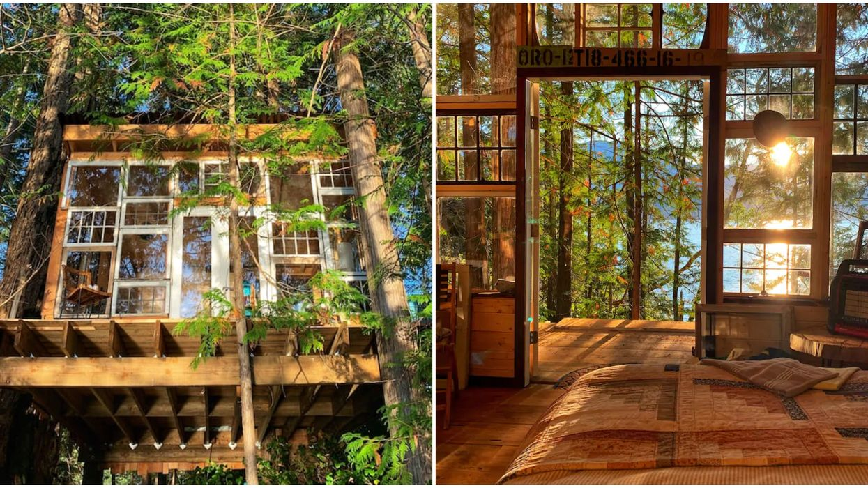 BC Treehouse For Rent On The Sunshine Coast Is A Hidden Oasis