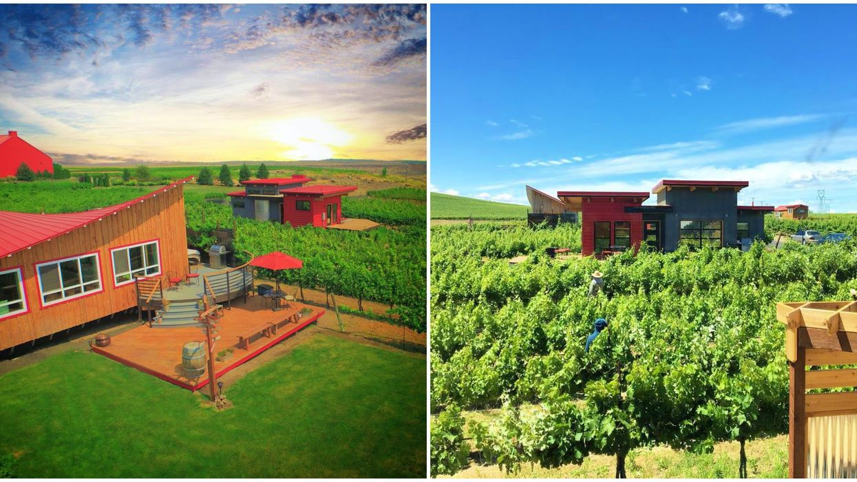 This Washington Wine Country Getaway Lets You Stay In A Romantic Vineyard