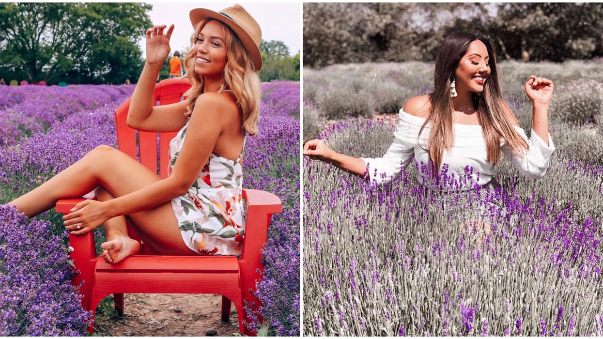 Ontario's Lavender Festival Is The Dreamiest Place To Spend Your Summer Days