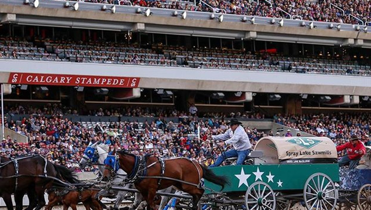 The Calgary Stampede Gets Its Budget Slashed & PETA Wants It Slashed More
