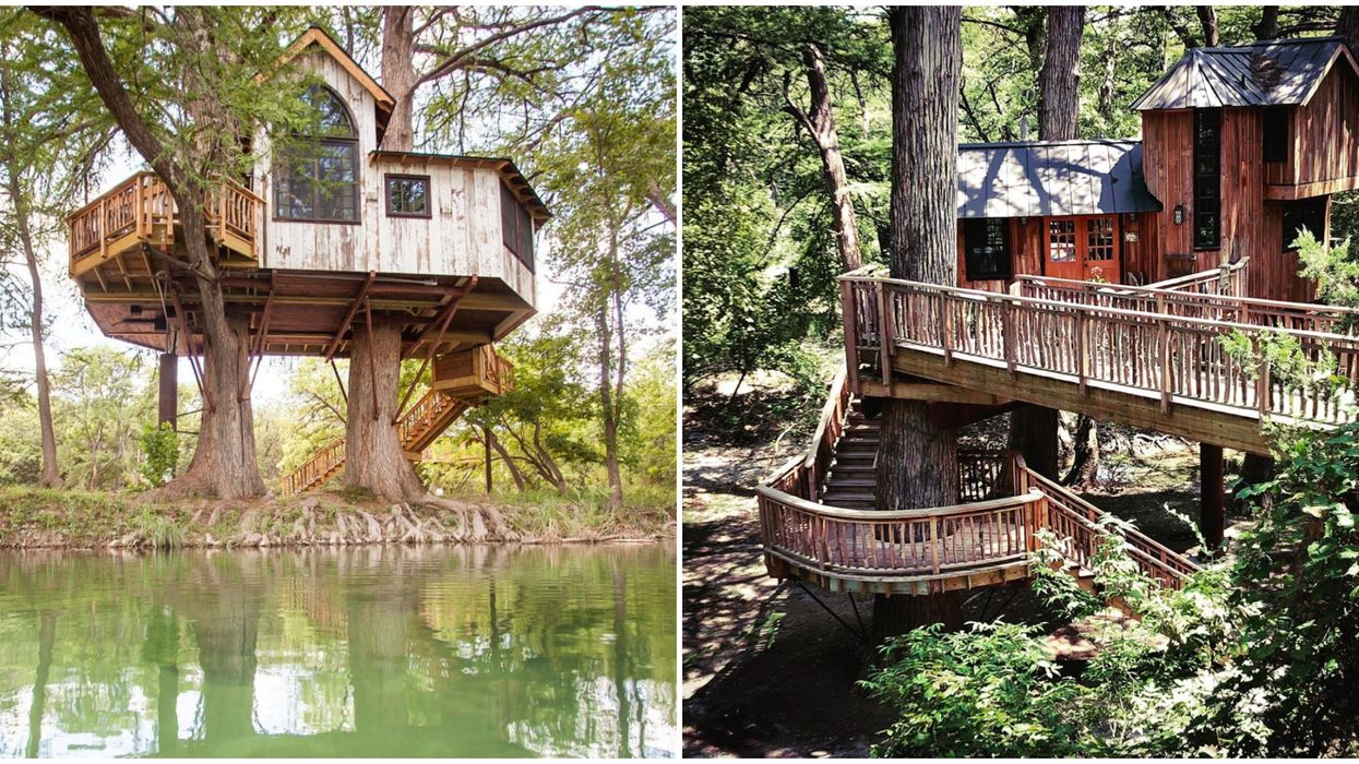 Treehouse Rentals Near San Antonio Like These Are The Perfect Stay