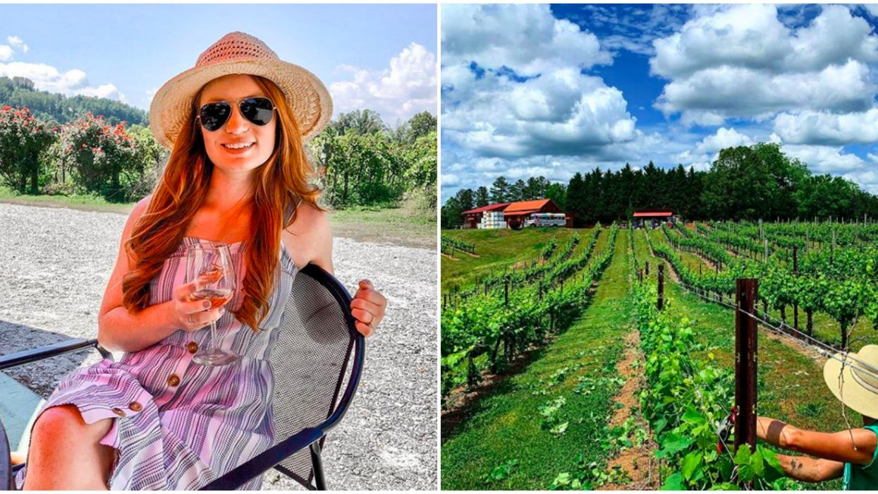 Best Wineries In North Carolina Can Be Found On These Road Trips