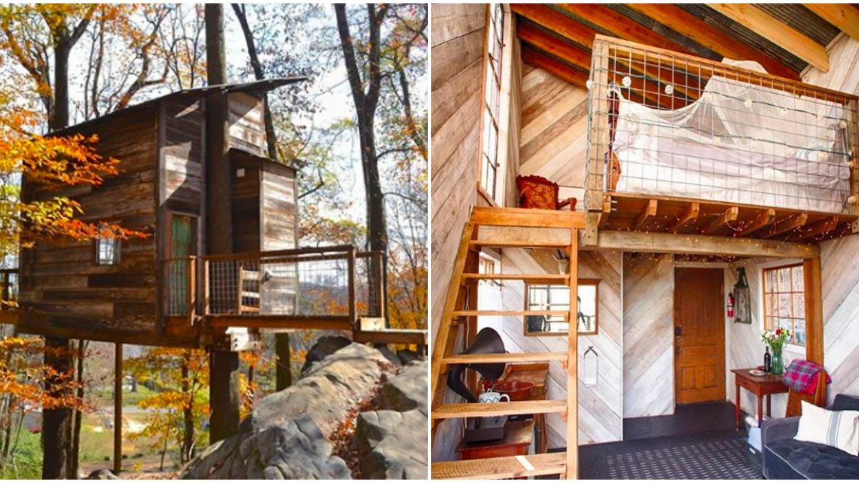 Best Treehouses In Georgia Include Free Wine & Fire Pits