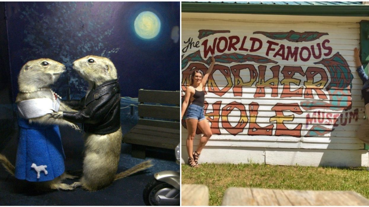 Gopher Hole Museum In Alberta Is All Dedicated To Dead Gophers And It's Amazing