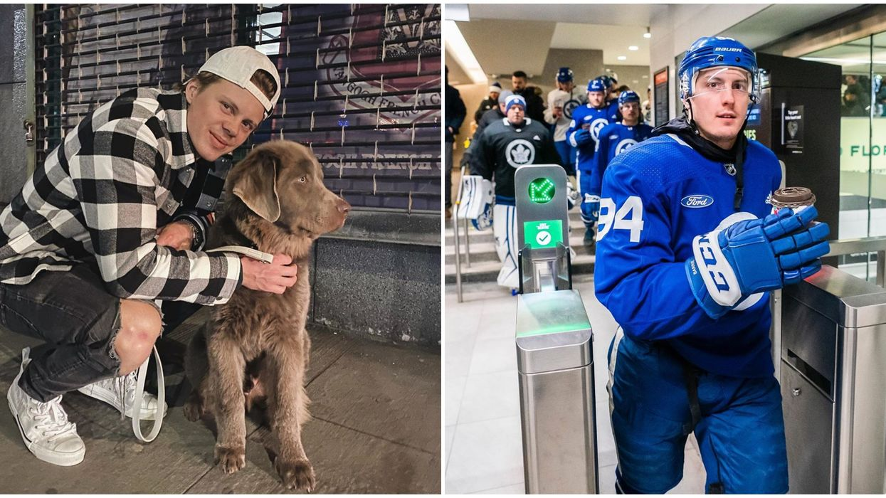 Toronto Maple Leafs Players Show How Torontonian They're Becoming