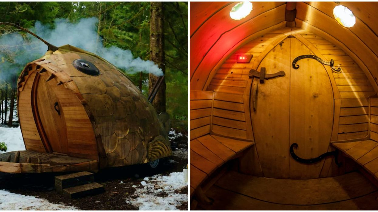 The Best Spa In Washington State Could Be This Fish Sauna & You Can Buy It