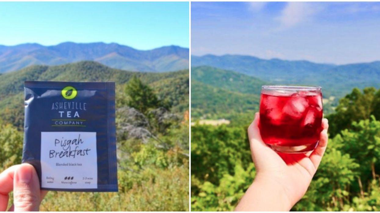 North Carolina Teas That Steep Heavy Mountain Flavors