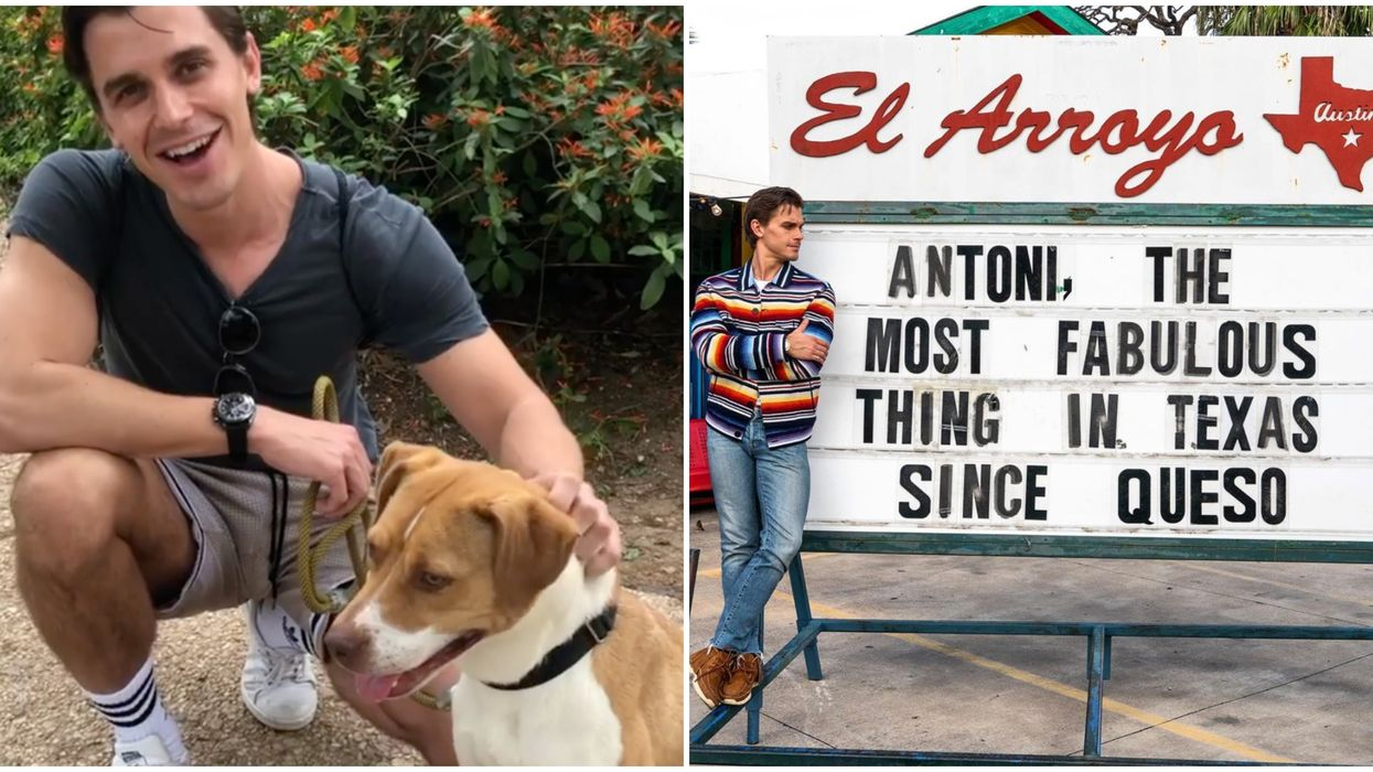 Antoni Fostered A Dog In Austin Today To Help Give Shelter Relief