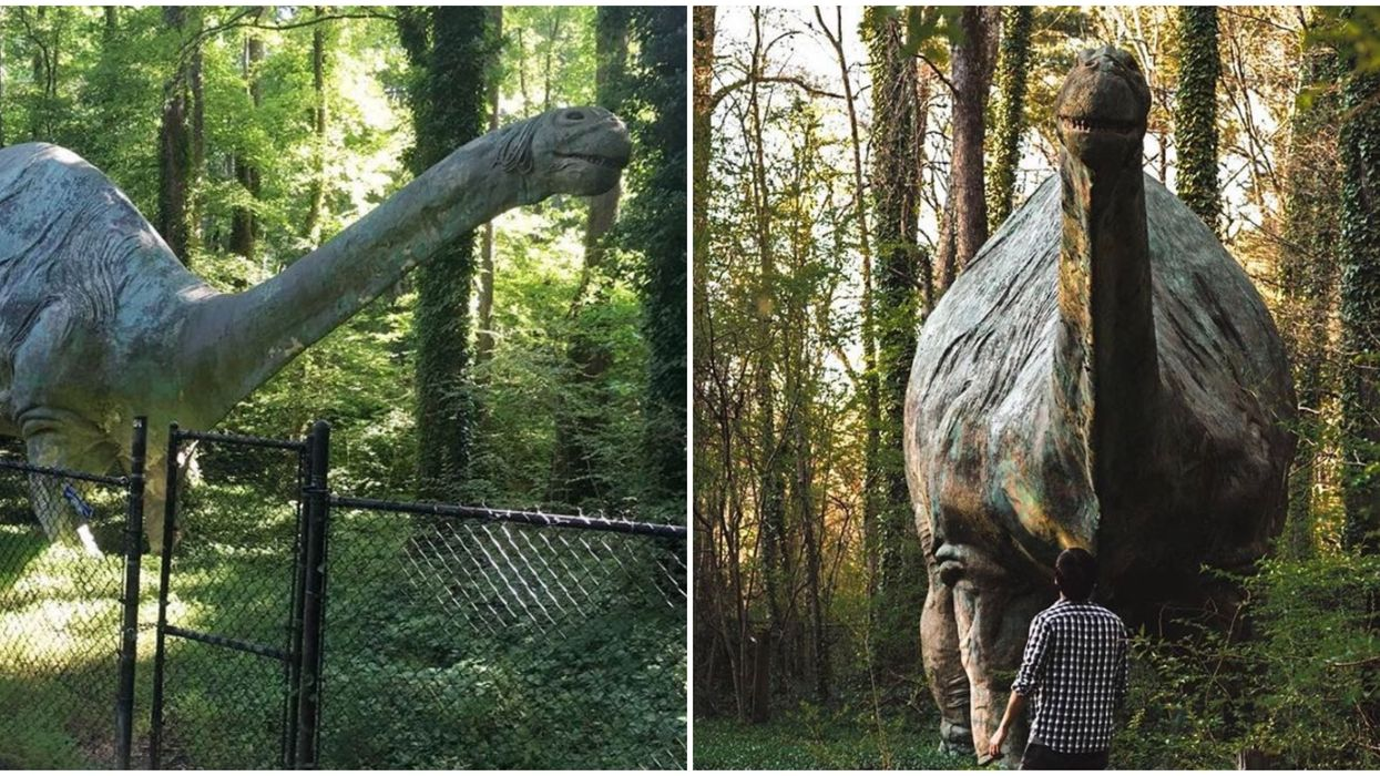 A Life-Size Dino Can Be Found In The Deep Woods Of This Small North Carolina Town