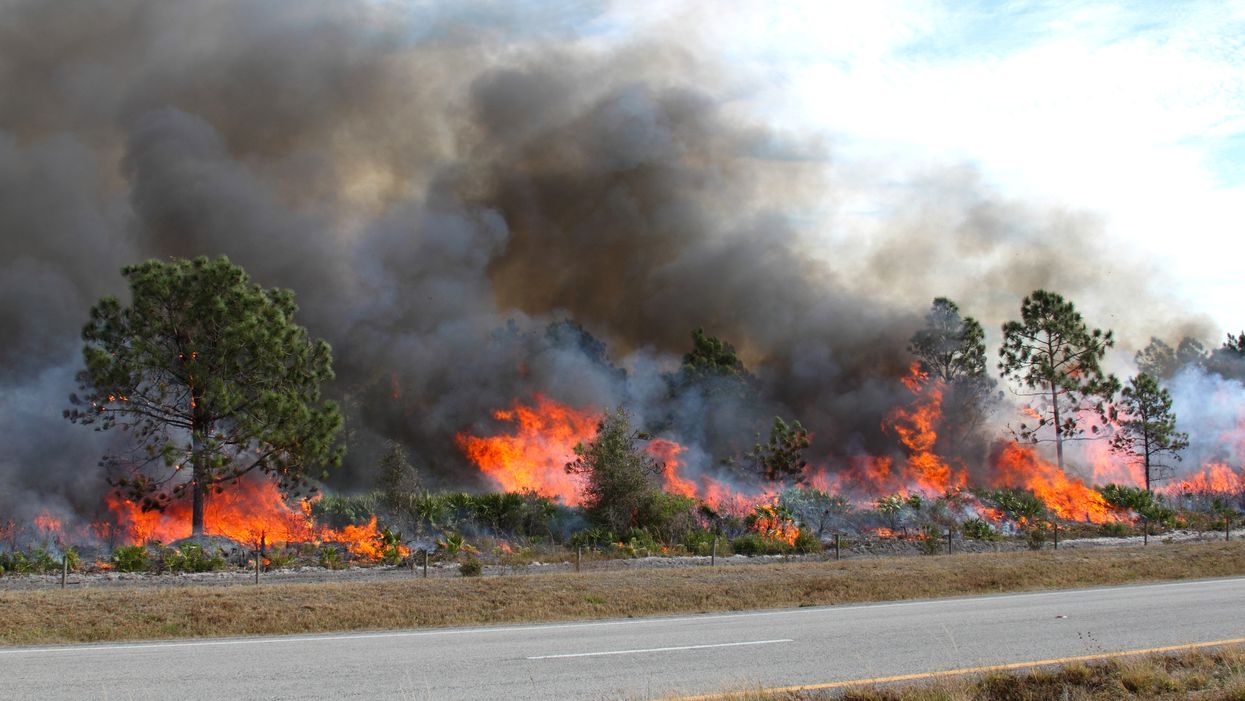 Florida Weather Predictions Show Drought Conditions And Wildfires Sweeping The State