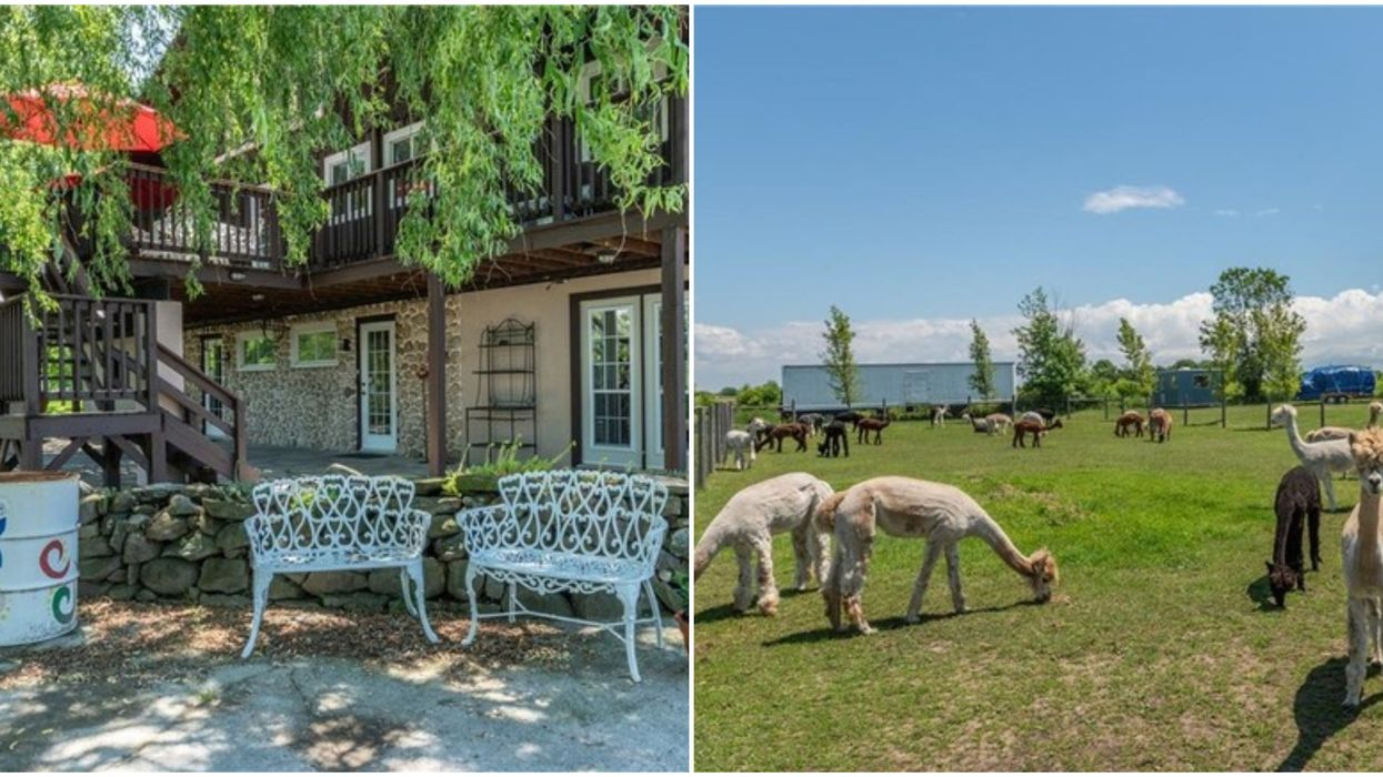 Ontario Chalet For Sale Near Niagara Comes With The Cutest Furry Neighbours