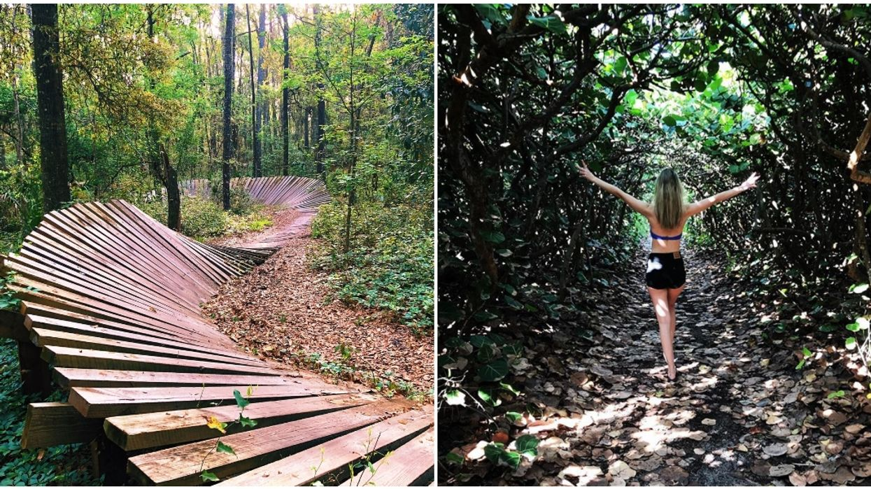 Florida Hiking Trails That Are Perfect For Your Summer Adventures