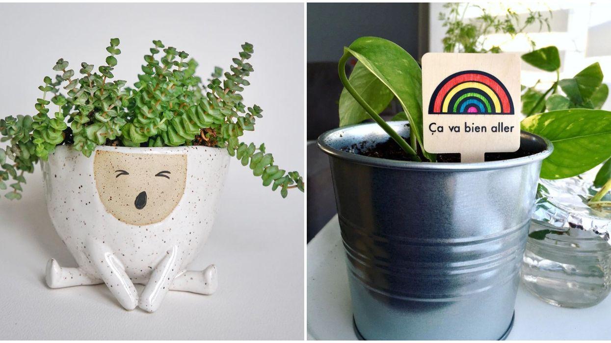 13 items d'ici à commander en ligne pour un jardin intérieur utile et instagrammable