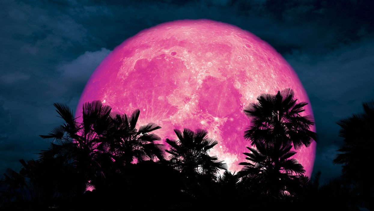 April's Full Pink Moon Will Be Visible Over The Southern US