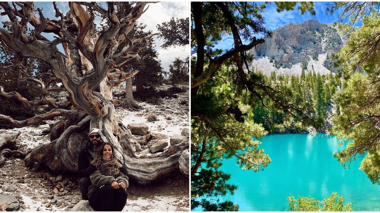 Great Basin National Park In Nevada Feels Like Wonderland Brought To Life