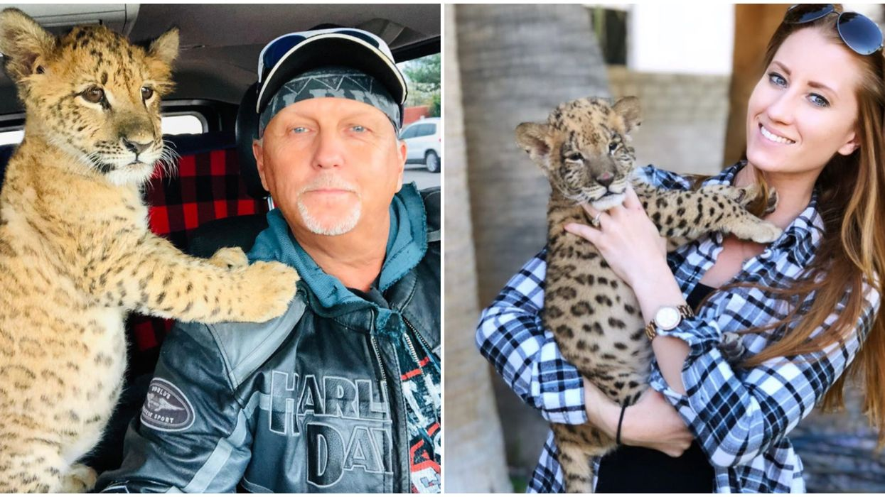Tiger King's Jeff And Lauren Lowe Now Have A TikTok Account