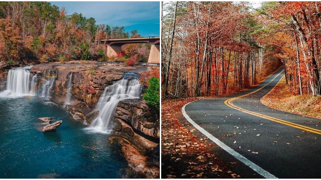 This Scenic Drive In Alabama Has 11 Miles Of Free Breathtaking Views