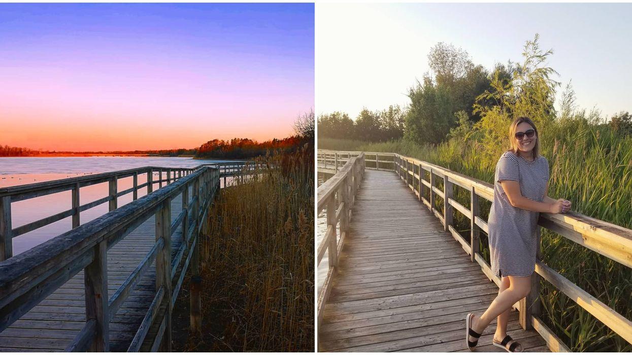 Mel Swart Lake Conservation Area Boardwalk Offers Incredible Sunset Views
