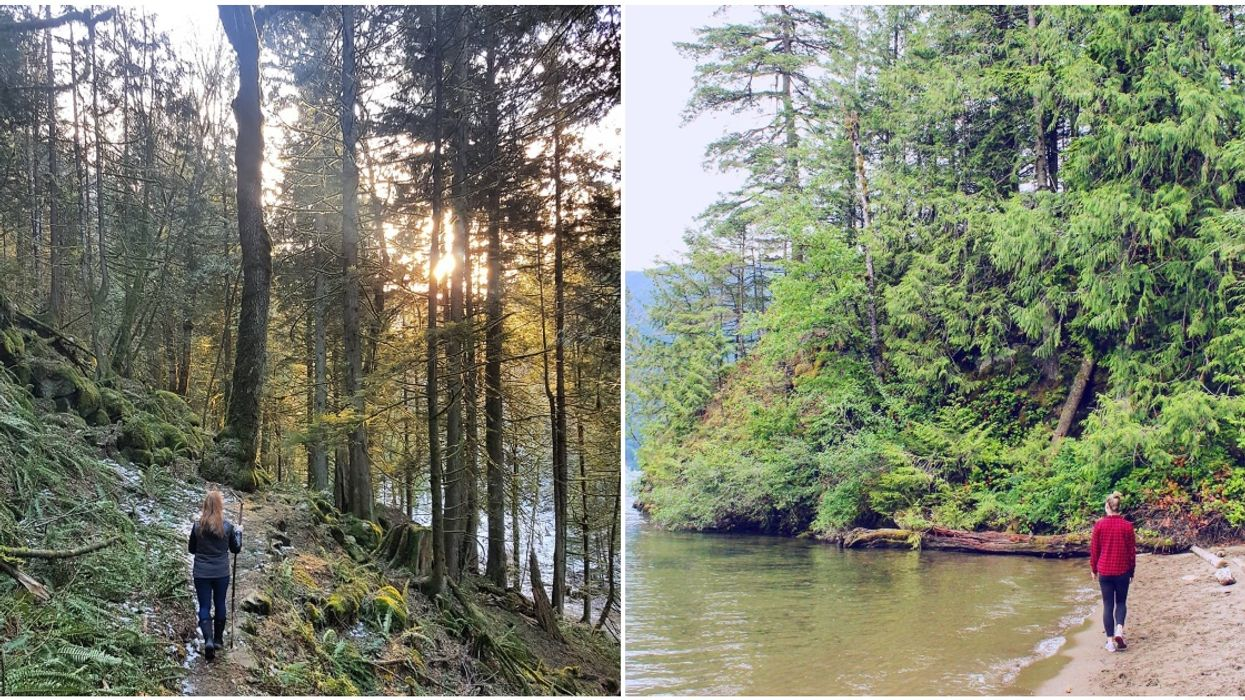 Sandy Cove In BC Has The Lush Green Forest & Secret Beach We All Need