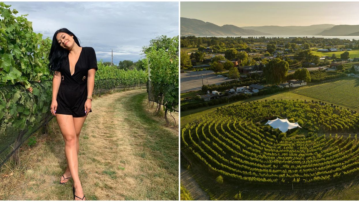 Labyrinth Of Grapevines In BC Is The Only One In Canada & It's Enchanting