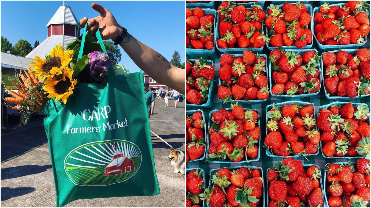 Ottawa Farmers' Market Is Going Online & You Can Get Fresh Local Produce Delivered