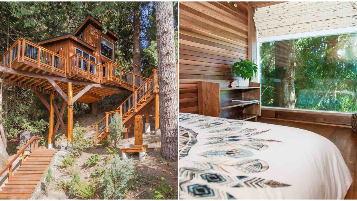 BC 'Owl's Perch' Cabin Is A Cozy Adult Treehouse Hidden In The Woods