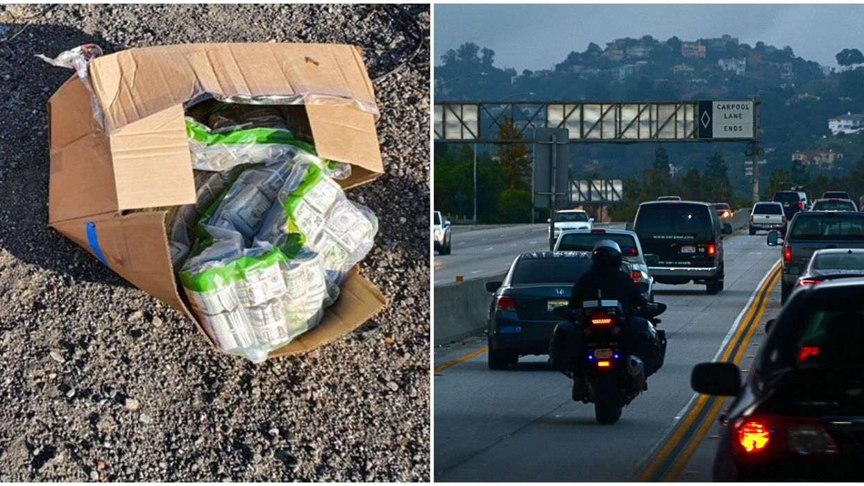 California Driver Ditched $915K On The Side Of The Road During Wild Getaway (PHOTOS)