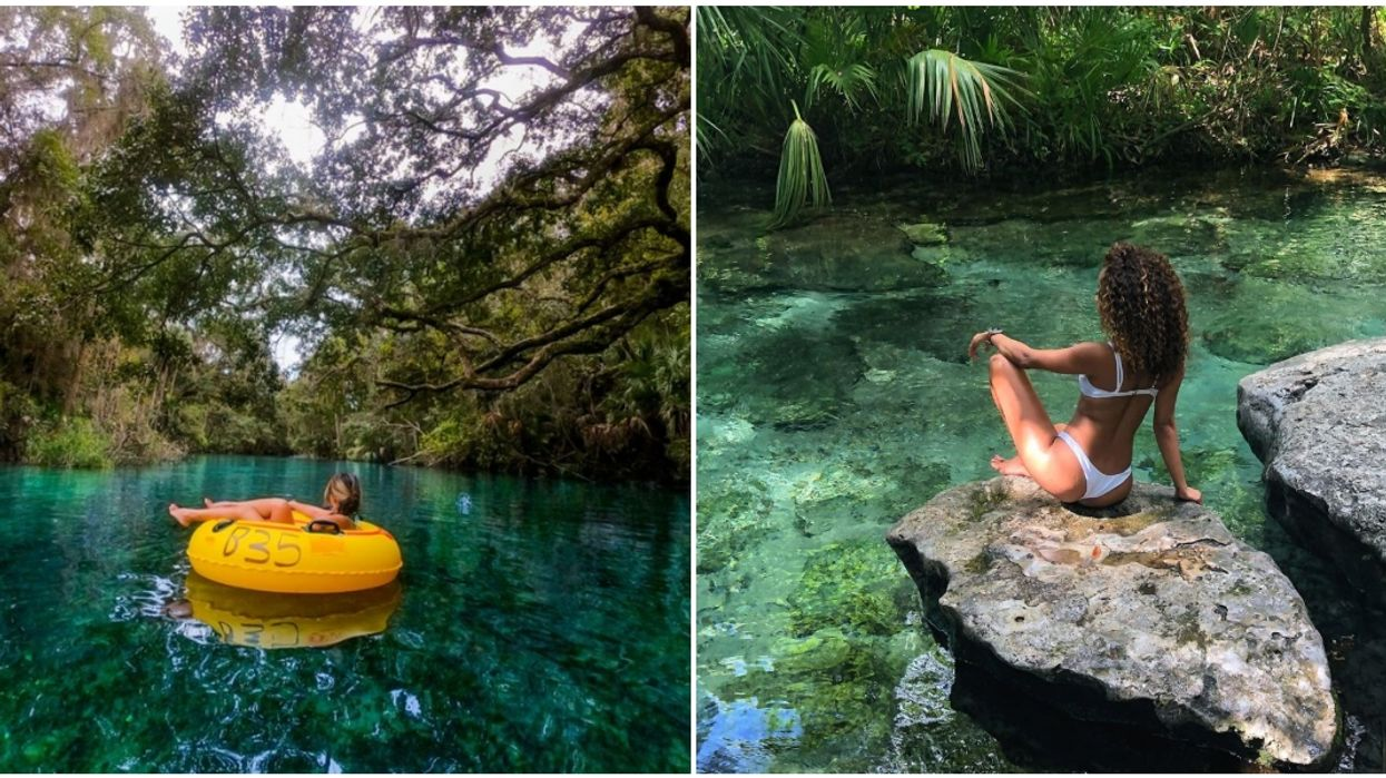 Natural Springs In Florida With Clear Blue Waters That Are Perfect For Summer