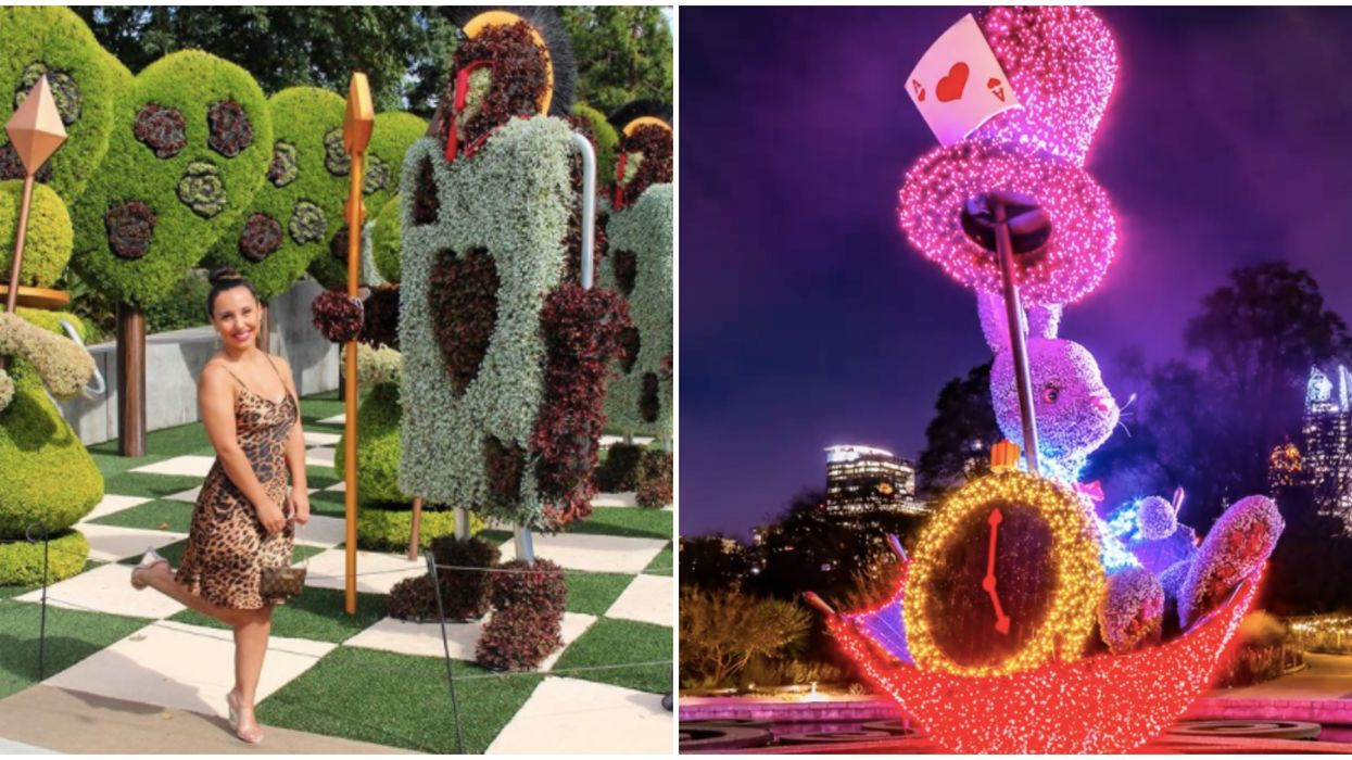Atlanta Botanical Gardens Has Officially Announced A Reopening Date