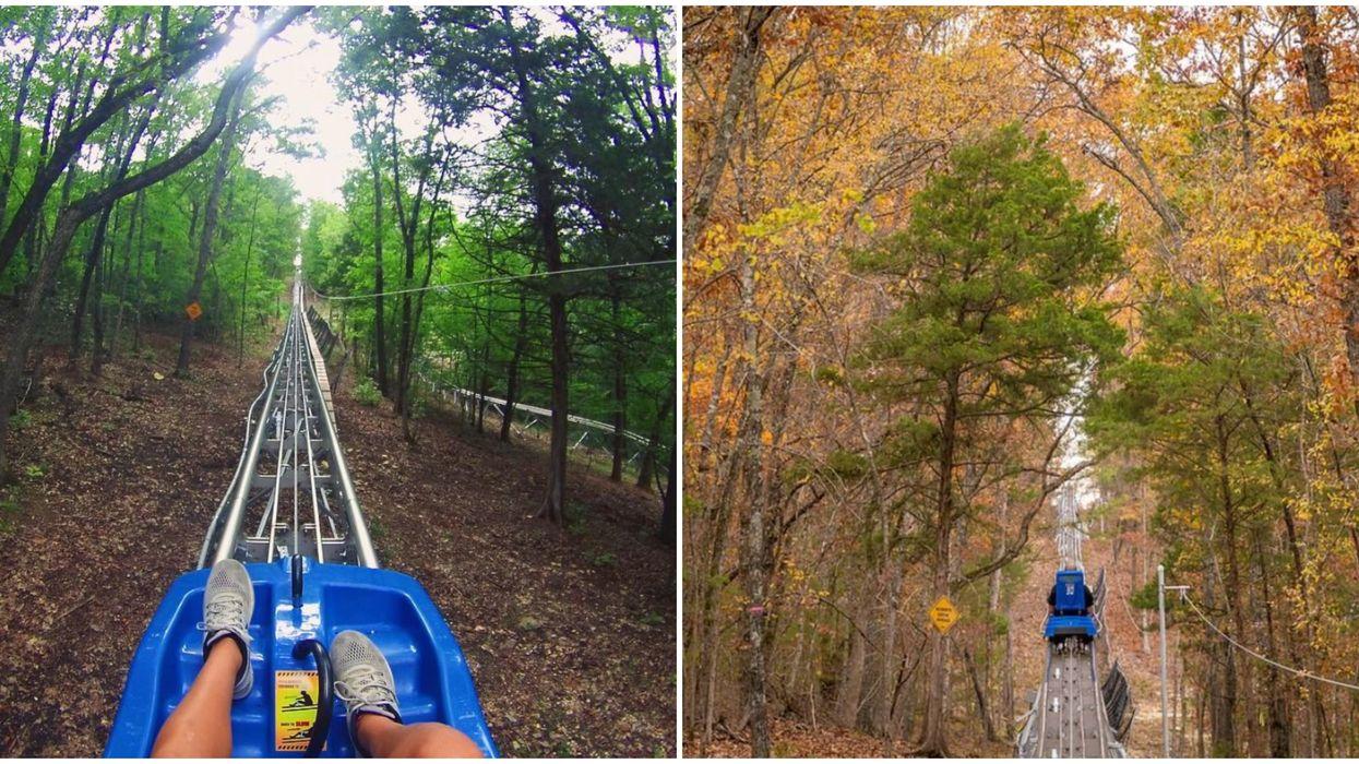 A Missouri Mountain Coaster Will Take You Soaring In The Sky