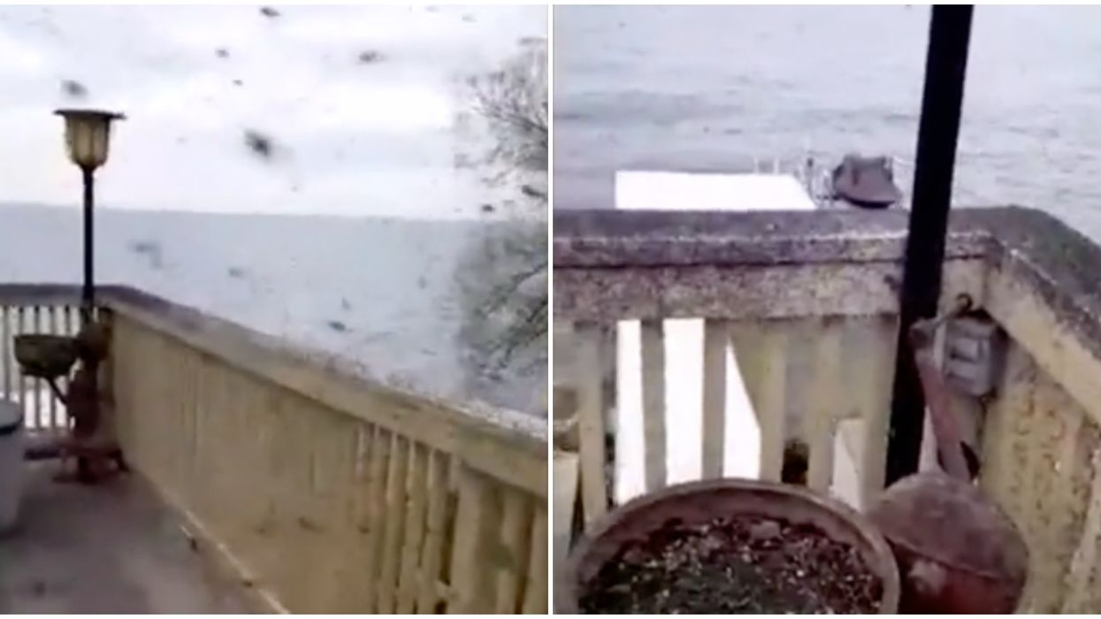 Midges In Ontario Swarming A Patio Looks Like A Horror Movie (VIDEO)