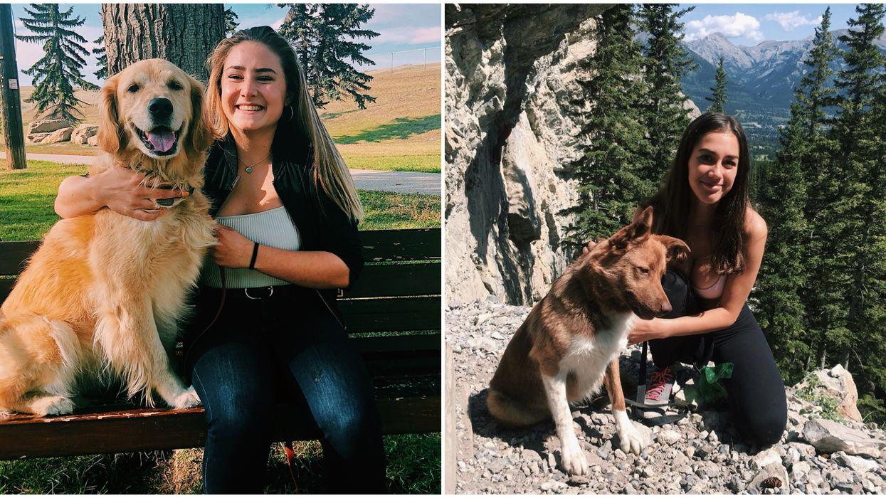 Dog-Friendly Trails Near Calgary Perfect To Explore With Your Best Friend This Summer