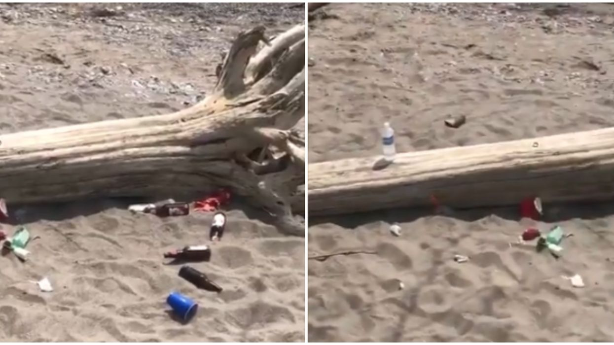 Toronto Parks And Beaches Are Seeing Big Trash Pileups As People Head Back Outdoors