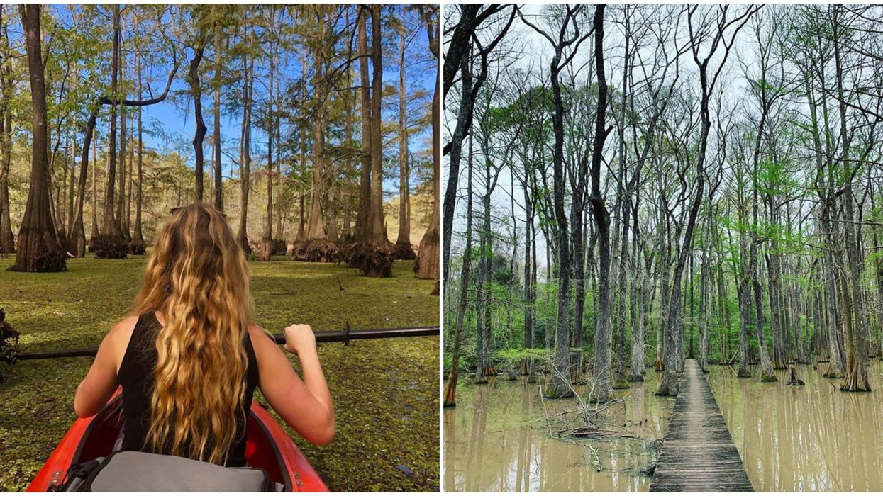 This Park Near Baton Rouge Is Home To Long Boardwalks & A Mystical Lake
