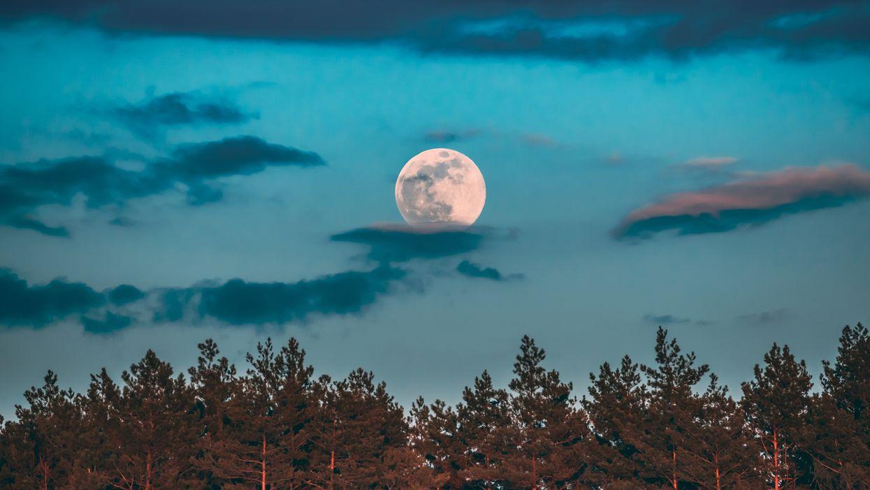 Tu ne veux pas manquer l'éclipse de la « Pleine Lune des Fraises » cette semaine au Québec