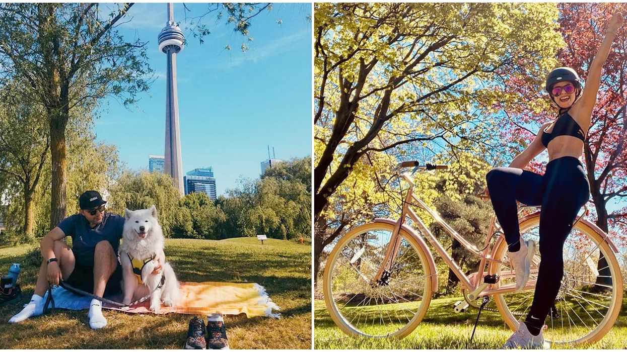 Toronto's Shady Parks Have Tons Of Trees To Nap Under