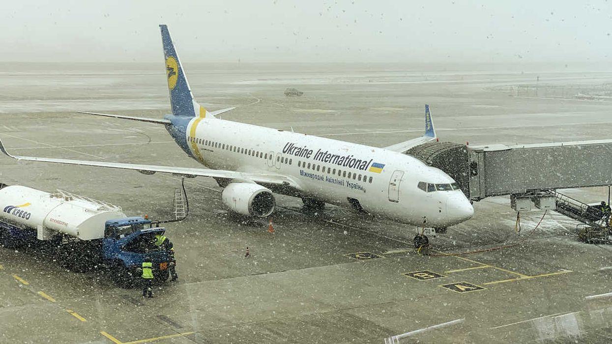 Un vol d'Ukrainian International Airlines arrive à YYZ avec des dizaines de chiots morts à bord