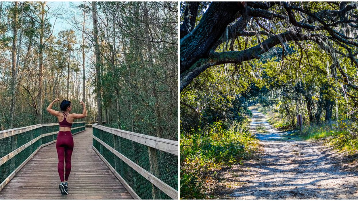 Florida State Forests Will Require Cashless Payments With New System