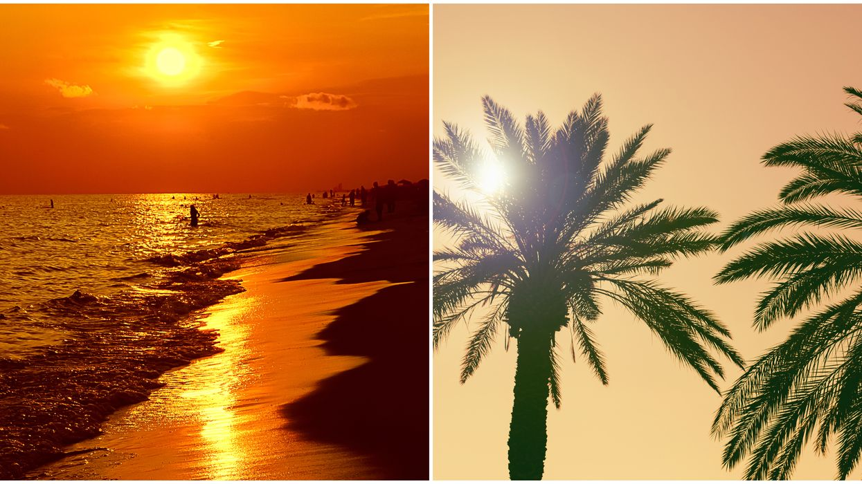 Heat Advisory Tampa Bay Weather Will Feel Hotter Than Death Valley