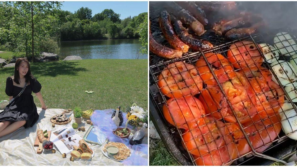 Barbecue : Ces parcs de Montréal et environs ont des BBQ offerts au public