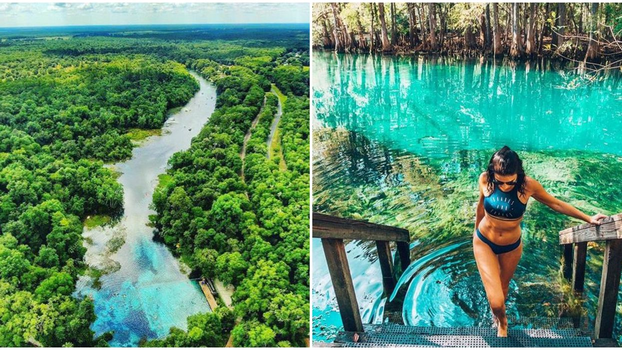 6 Florida Springs Swimming Spots Just A Short Drive From Tampa To Float The Days Away