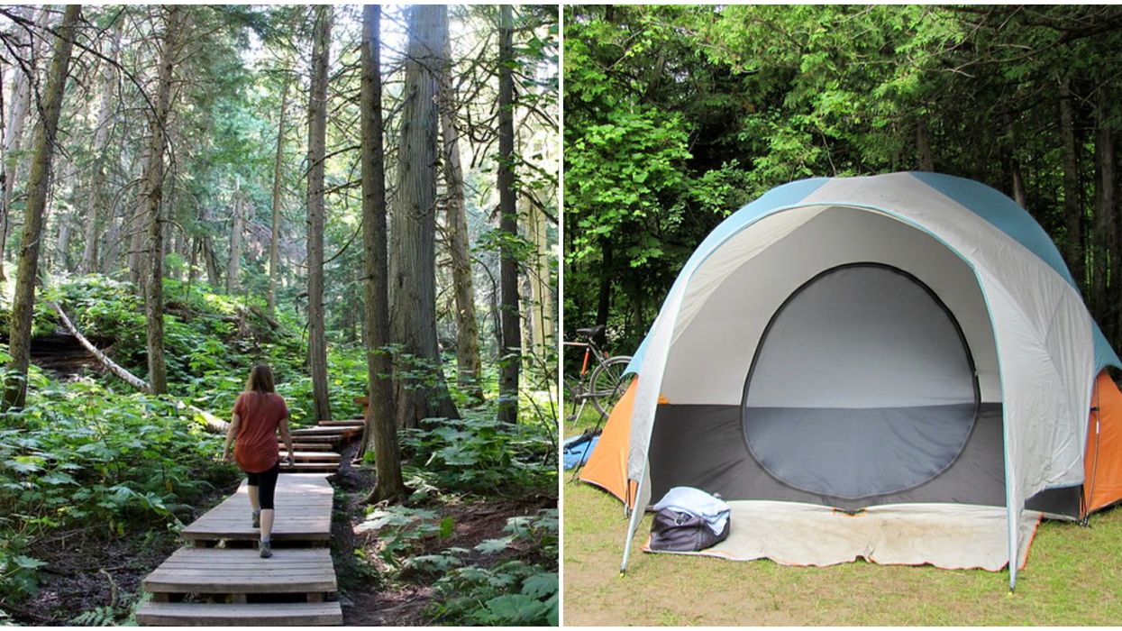 Camping In Revelstoke National Park BC Is Opening Soon & You Can Reserve Starting Now