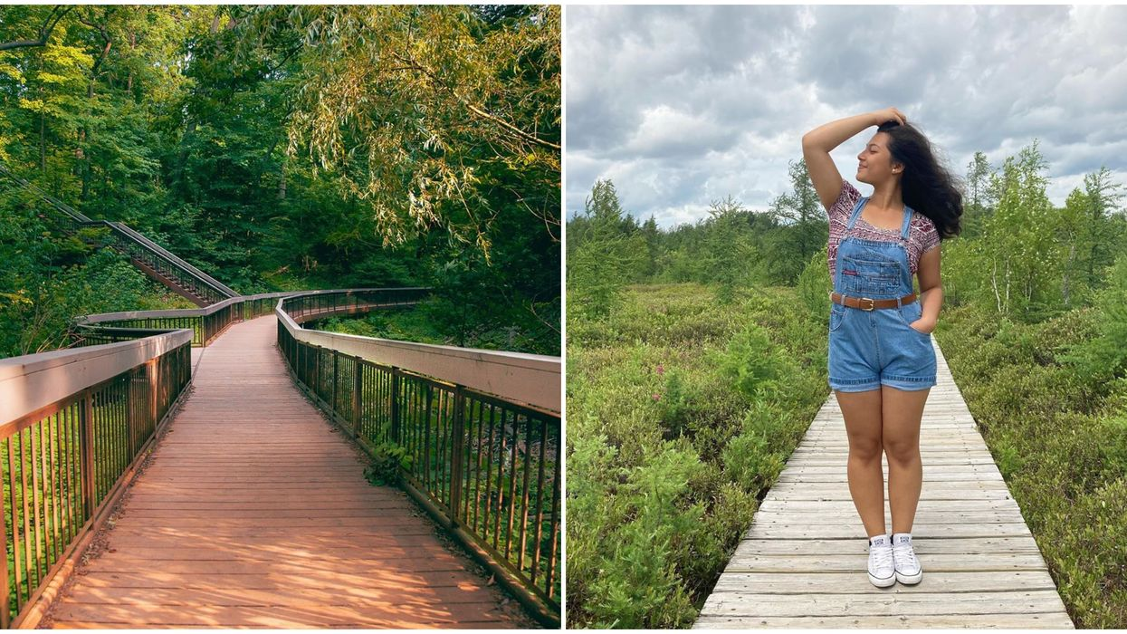 9 Ontario Boardwalk Trails That Will Almost Make You Want To Take Up Running