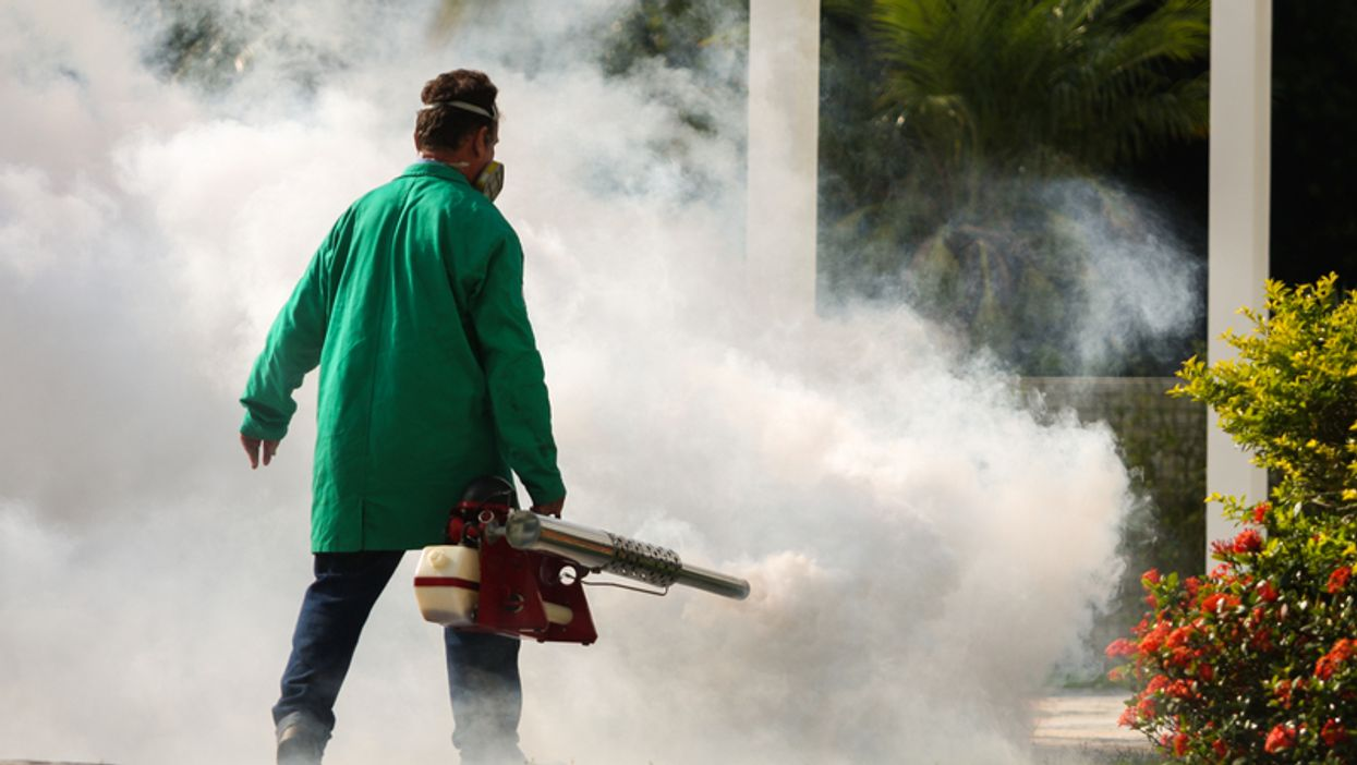 Dengue Fever In The Florida Keys Is Spreading As New Cases Are Confirmed