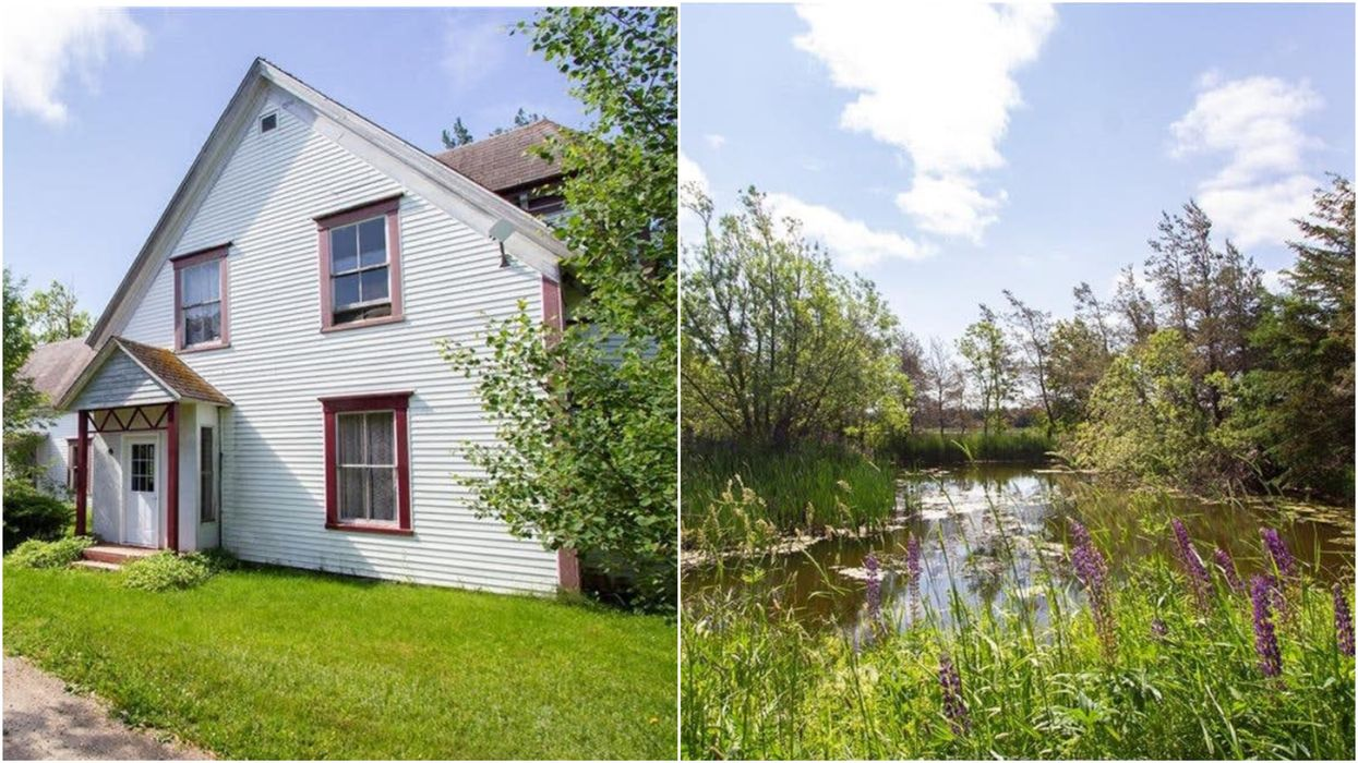 This 4-Bedroom House For Sale In New Brunswick Has A Huge Backyard Pond & Costs Just $85K