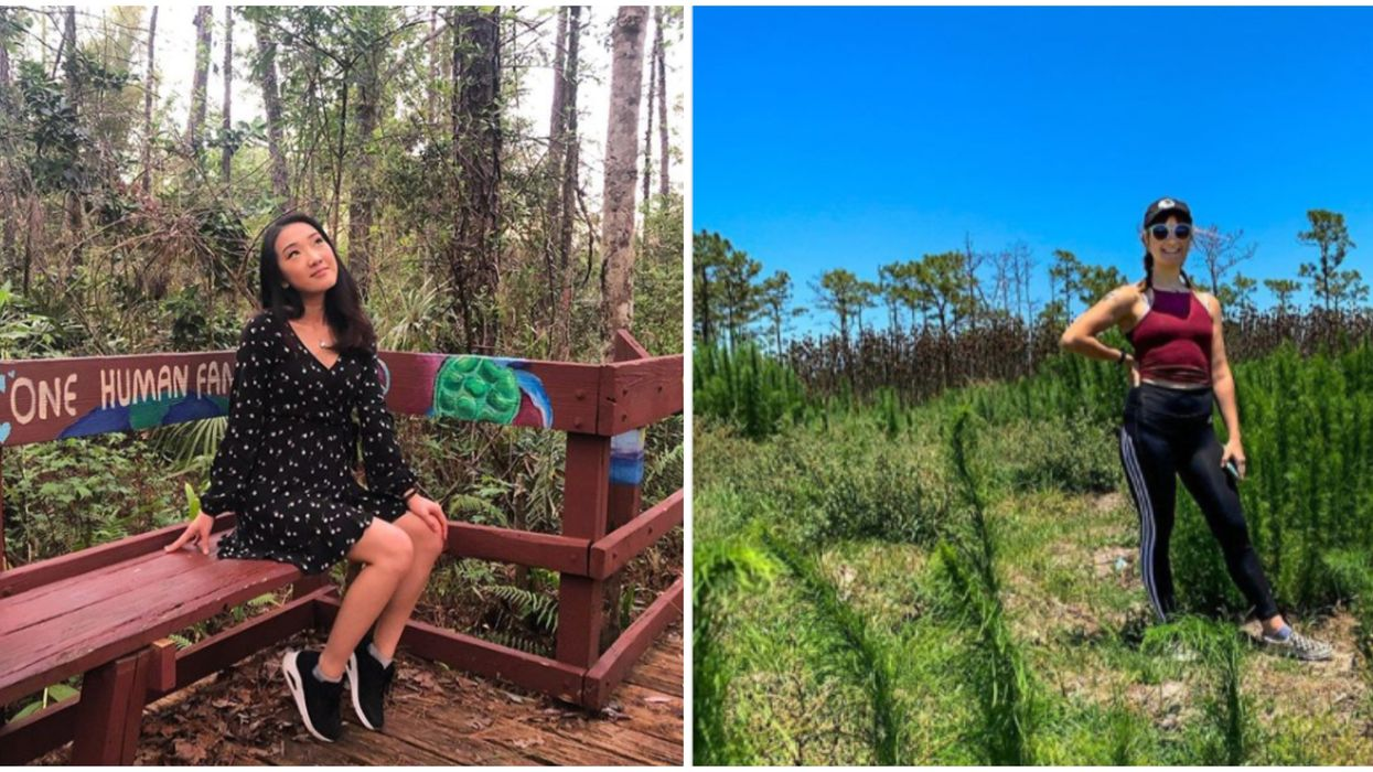 Nature Escapes In Orlando That Feel As Though You're Not Even In The City