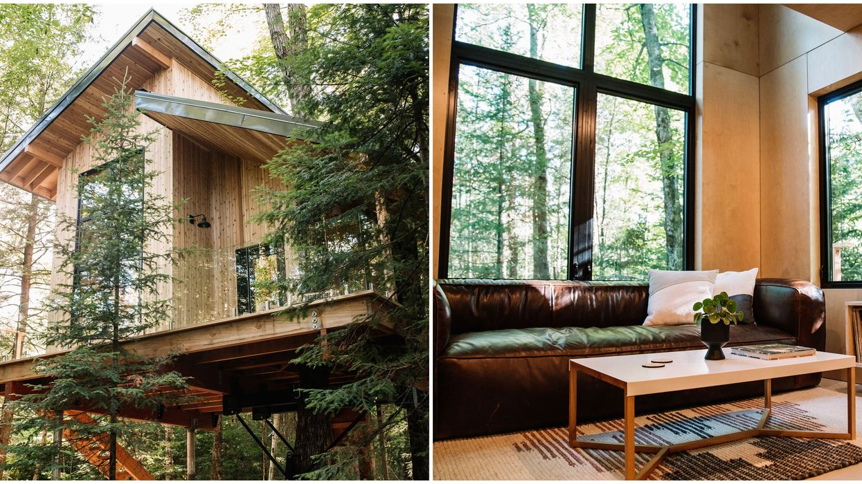 An Ontario Treehouse Airbnb Opens In September And The First Look Will Blow You Away
