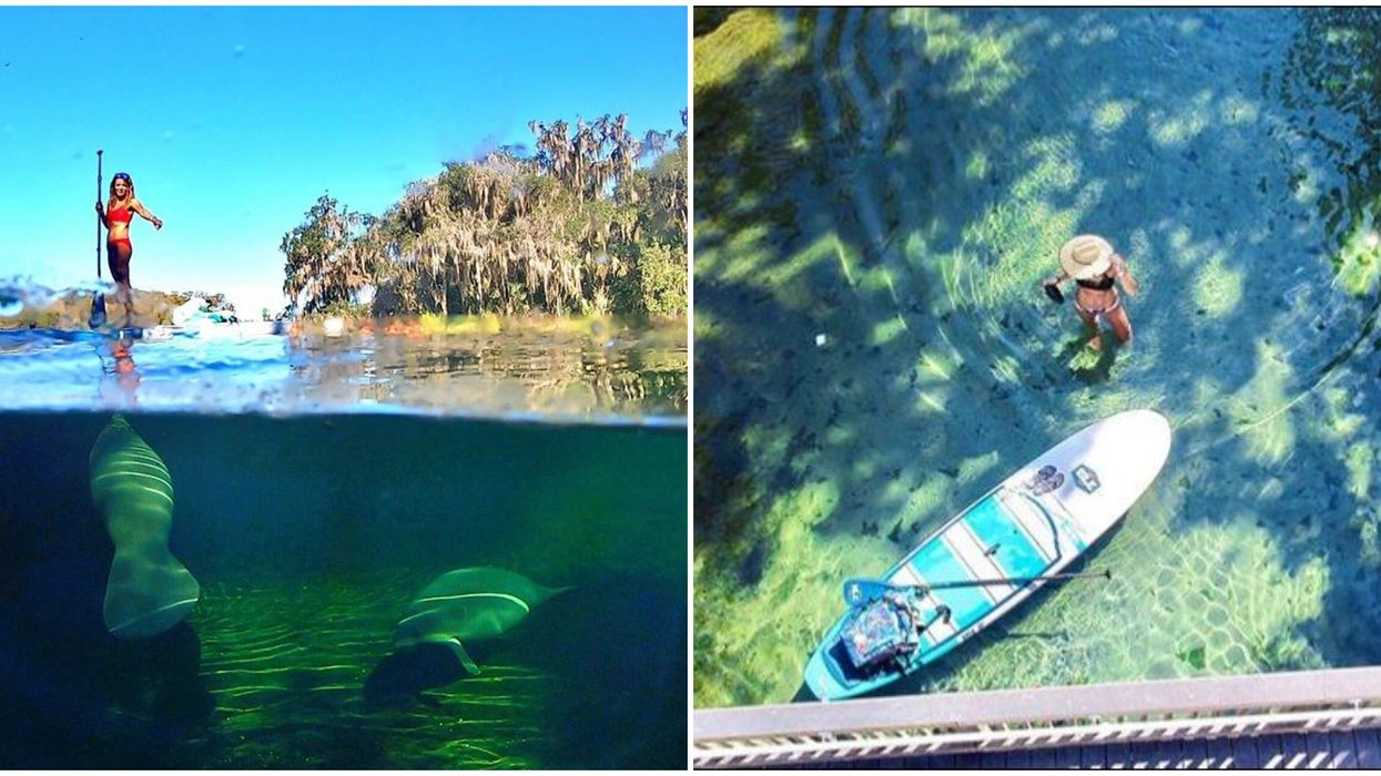 Swimming Hole Spots Near Orlando With Crystal Clear Waters Where You Can See The Bottom